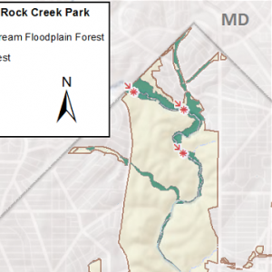 map of Tuliptree Small-Stream Floodplain Forest in Rock Creek Park